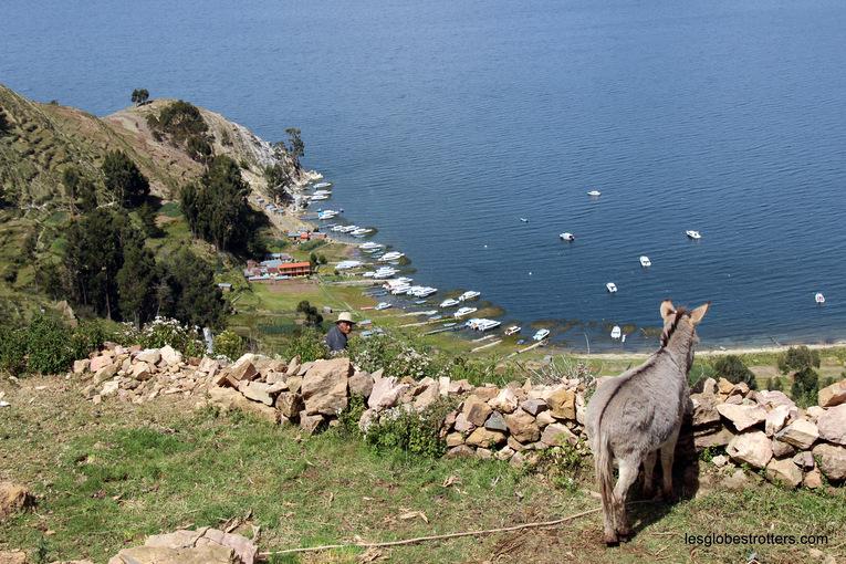 Copacabana, le lac Titicaca et l'Isla del Sol, le trio gagnant!